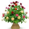 Colourful basket composition