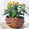 Shop Lantana Flower Plant in Folded Hands Ceramic Planter