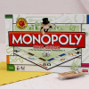 Monopoly- The Indian Version