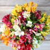 Prism - 40 Alstroemeria Blooms Bouquet